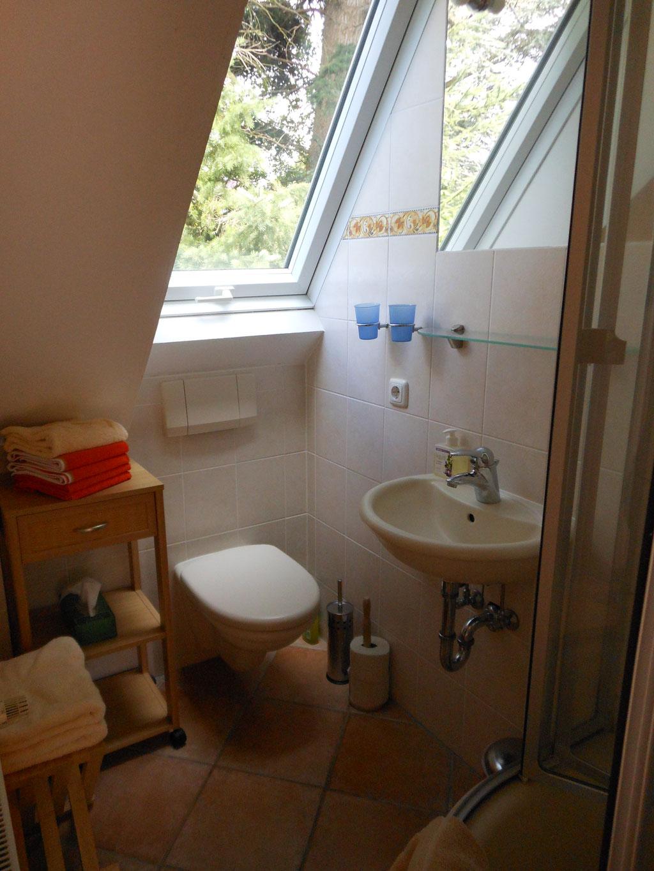 Das Badezimmer der Ferienwohnung mit Dusche und WC.