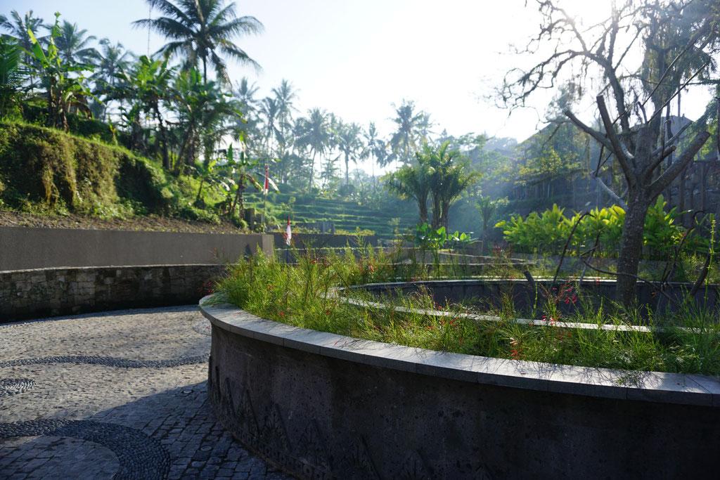 Reisterasse in Bali beim Hotel Natya Ubud im Sicherheitsbereich