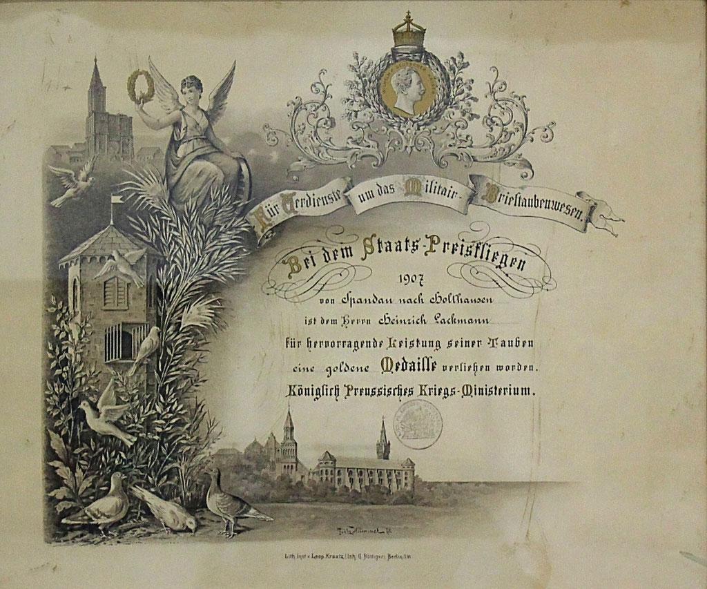 Diplom zur goldenen Medaille des Königl. Preussischen Kriegs-Ministeriums für besondere Leistungen um das Militär-Brieftauben-Wesen 1907