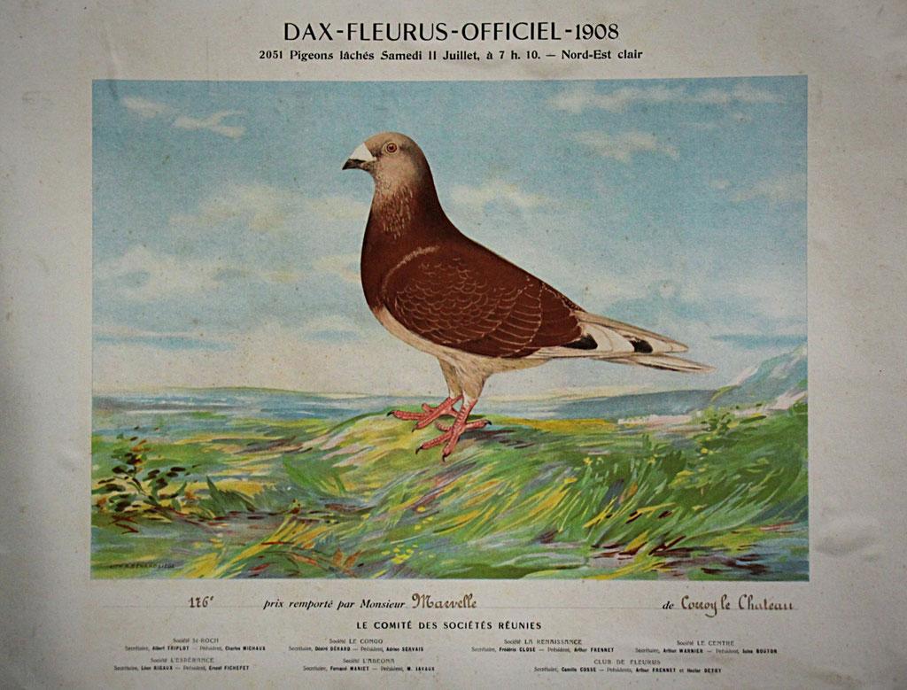 Urkunde für den 116. Konkurs ab Dax im Jahre 1908