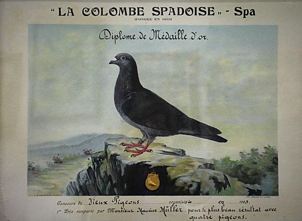 Urkunde für den 1. Preis ab Spa aus dem Jahr 1923