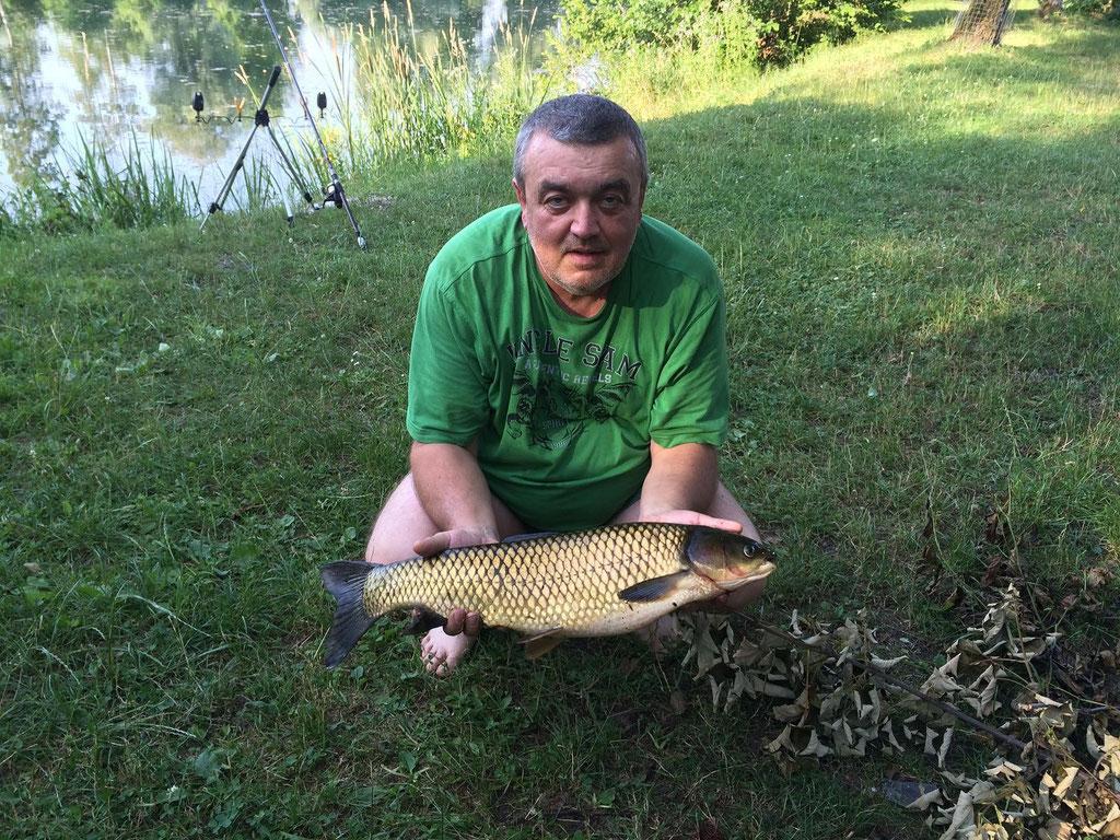 Grasfisch, 65 cm, 3,5 Kg, Juli 2015, Weiher 2