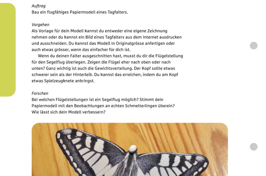 Einer der Forschungsaufträge, die wir zusammen durchführen werden: Wir bauen ein flugfähiges Modell eines Schmetterlings.