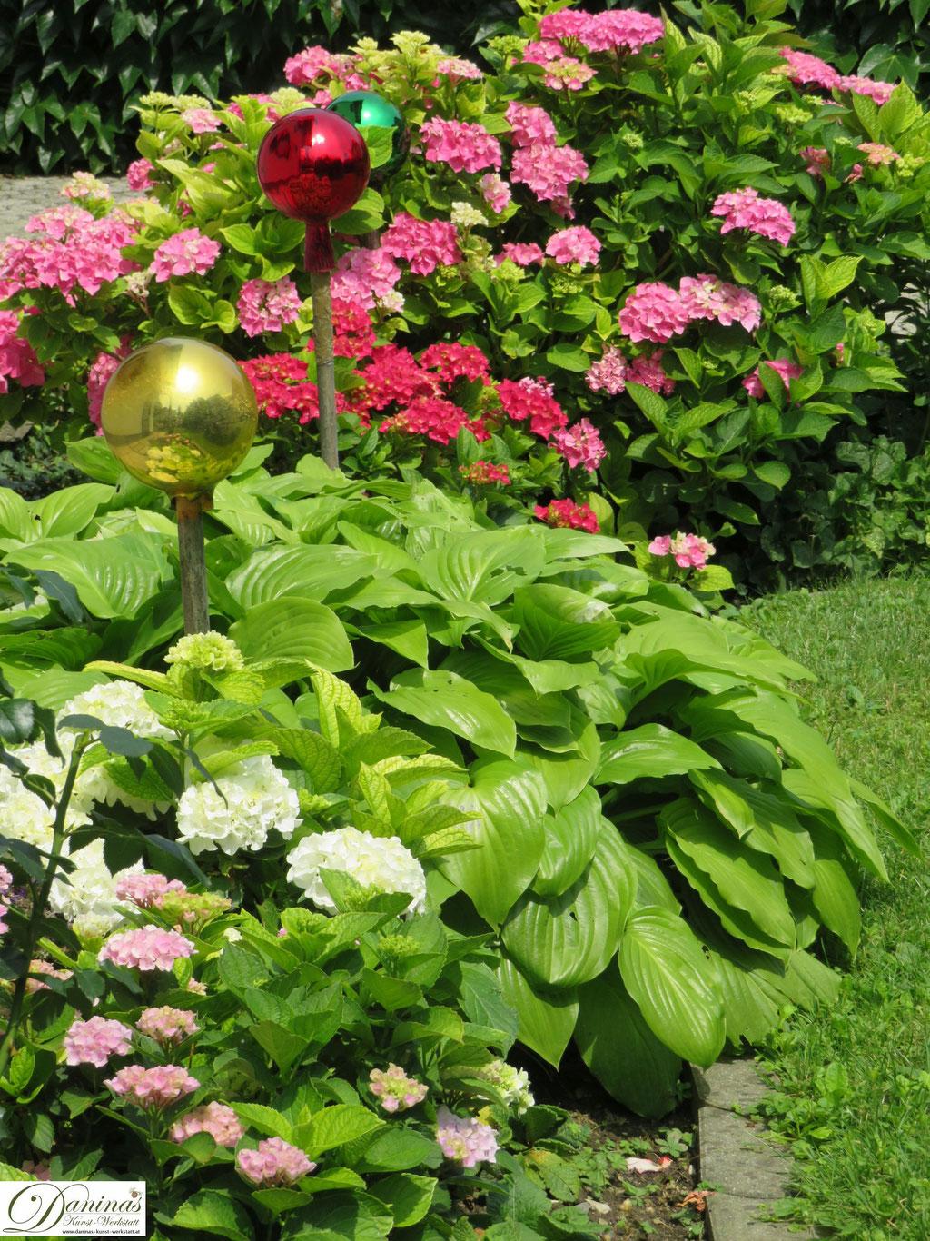 Romantisches Hortensien Beet