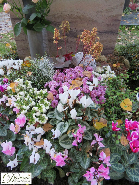 Grabgestaltung Mustergräber - Bepflanzung in Rosa und Weiß