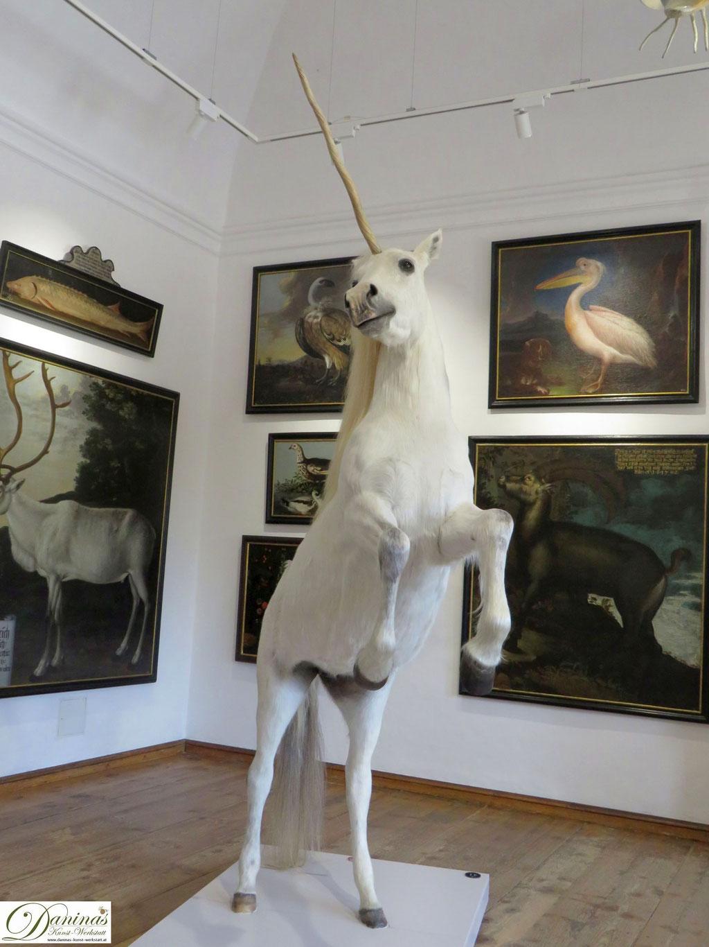SchauLust – Die unerwartete Welt des Markus Sittikus. Schloss Hellbrunn Salzburg