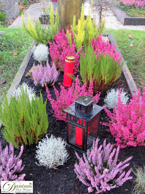 Grabgestaltung Mustergräber - mit rosa, lila, grünem Heidekraut und Gitterkraut