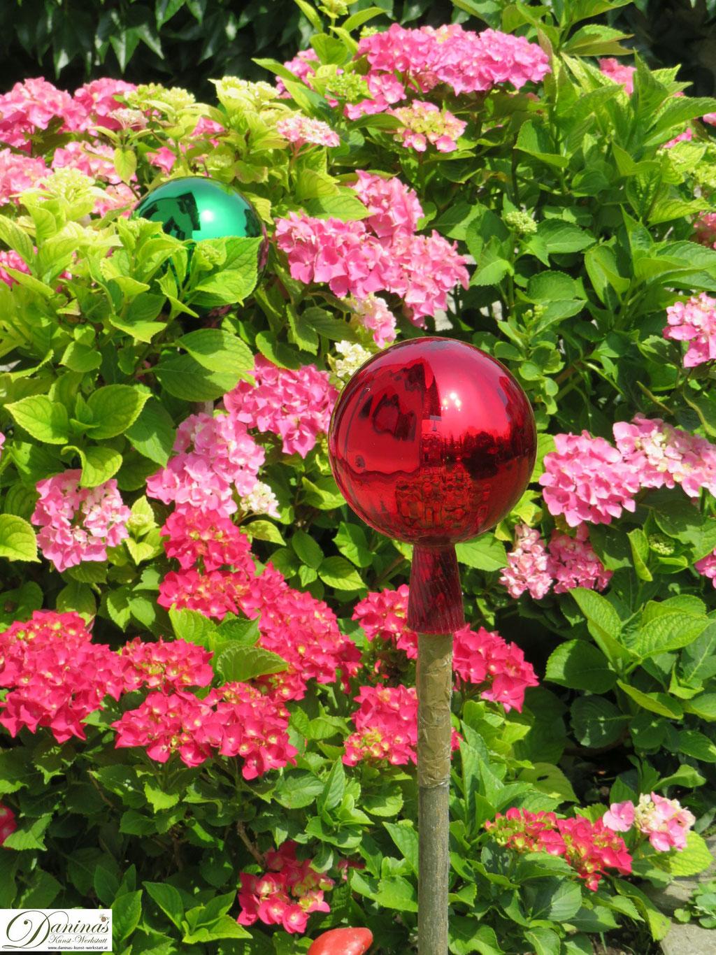 Rote und Rosa Hortensien