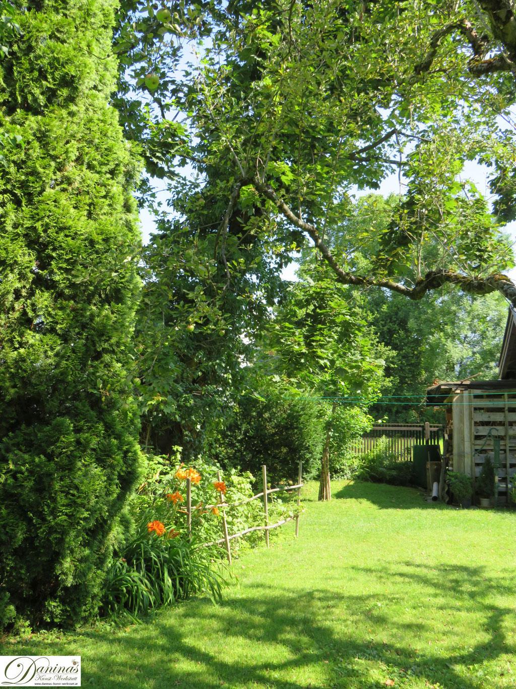 Saftiges Grün im Sommer Garten