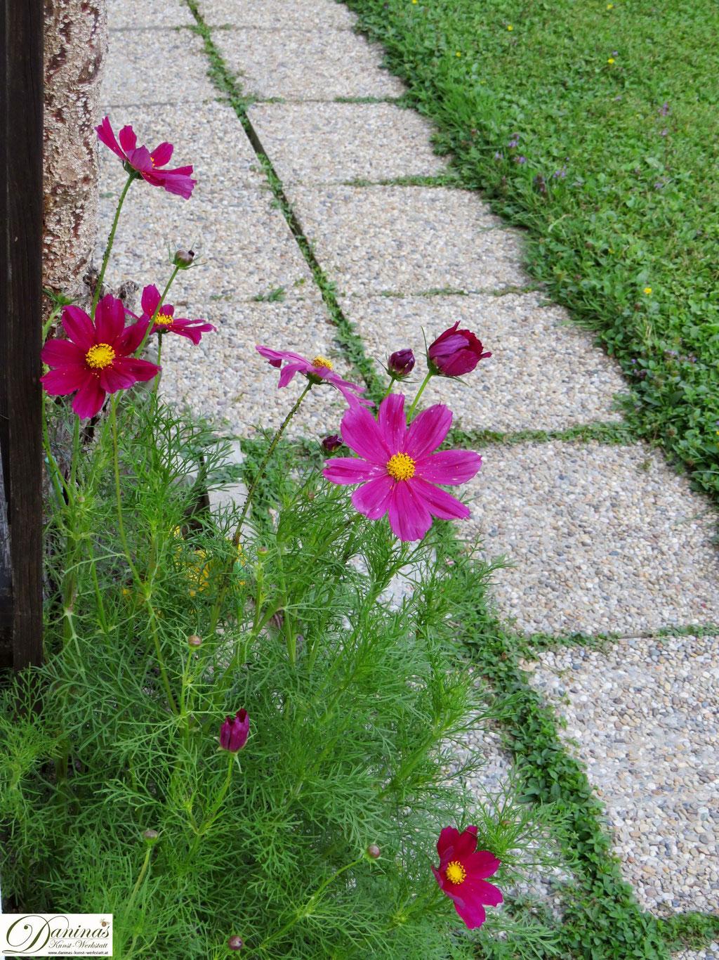 Schmuckkörbchen im Garten