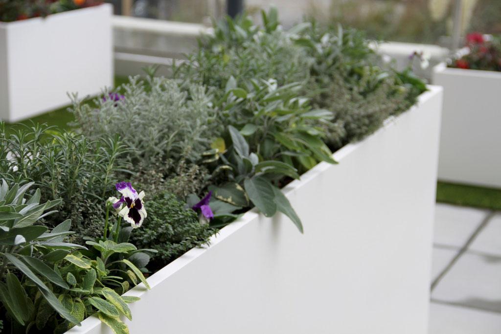 Terrassengestaltung | Dulliken