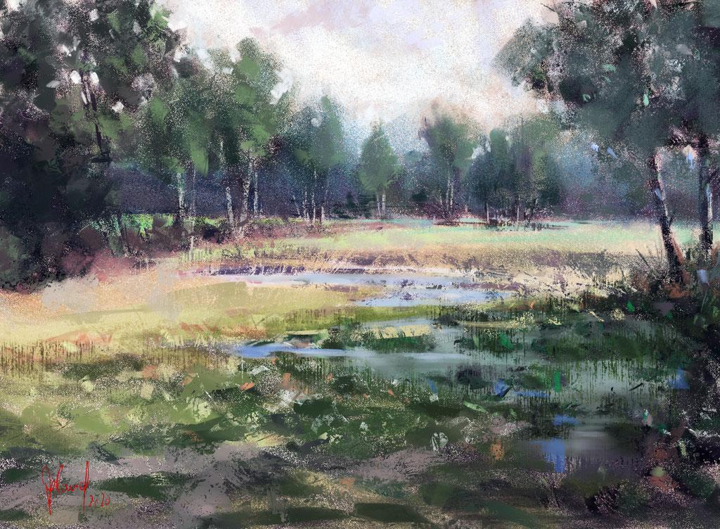 Landschaftsstudie (Teufelsmoor)