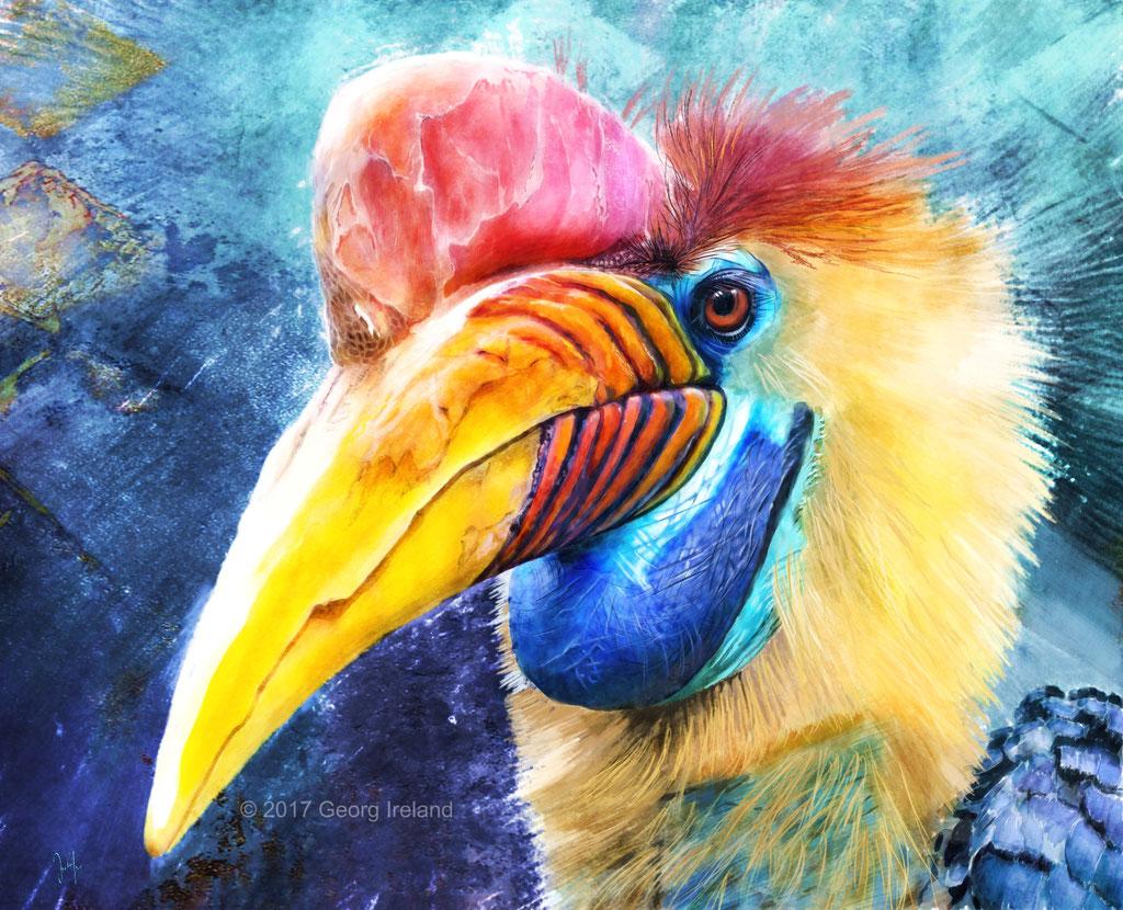 Helmhornvogel