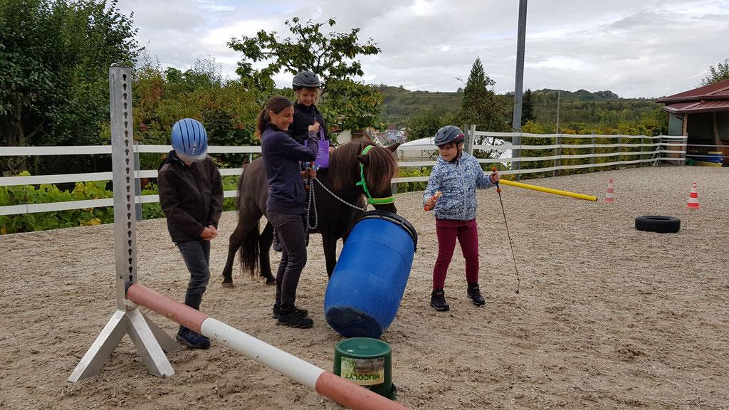 Hippolini Schulprojekt auf Fiedlers Drachenhof
