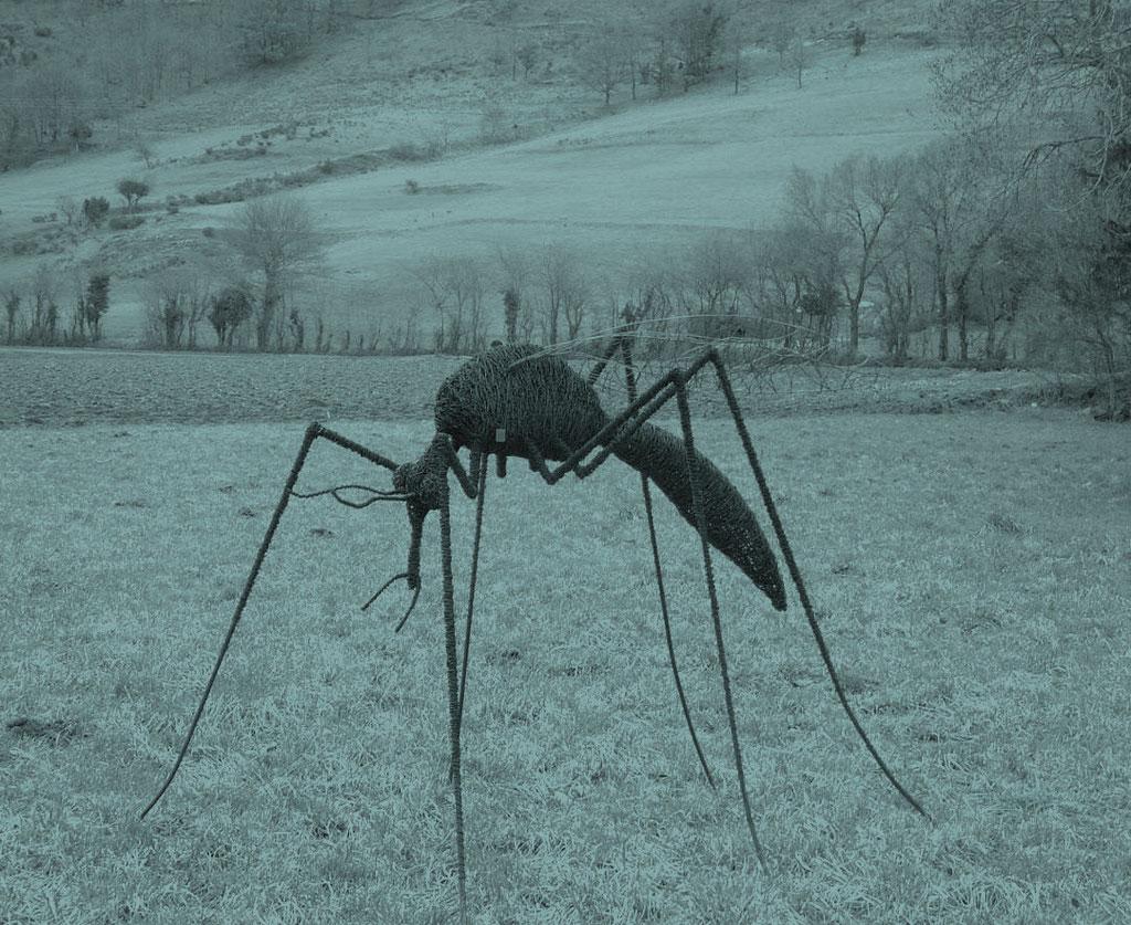 Sculptures d'insectes vendues dans les zoo et dans le privé