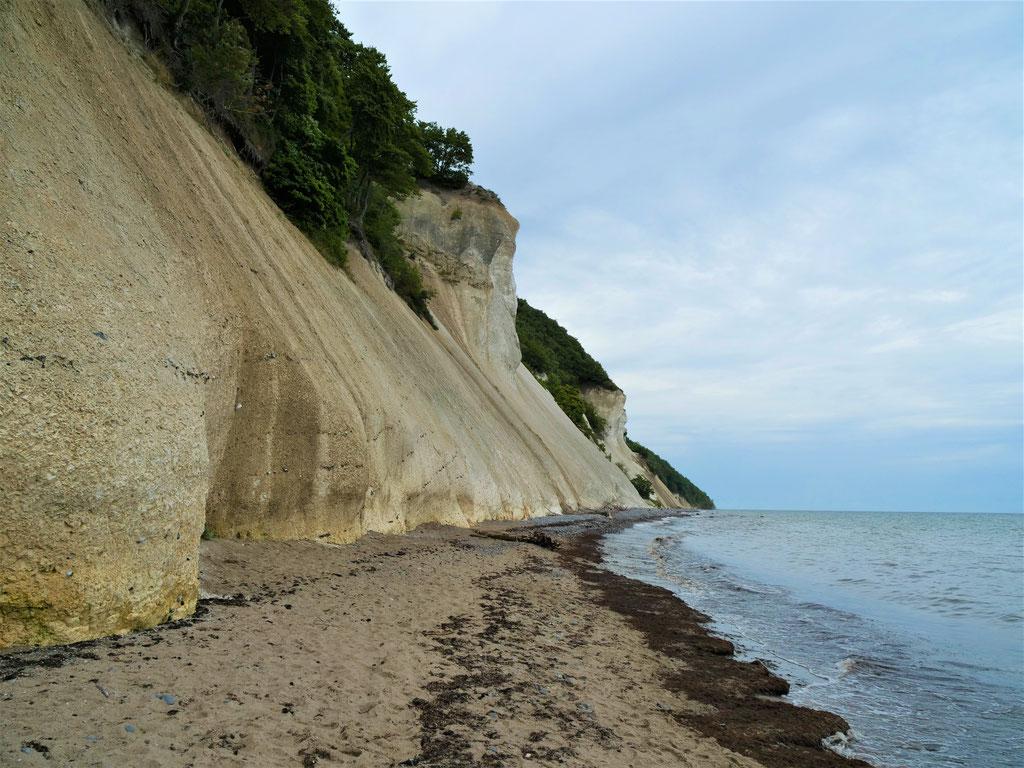 Dänemark Mønsklint Kalkstein Felsen klippen Møn roadreip overland #NordkappUndZurück