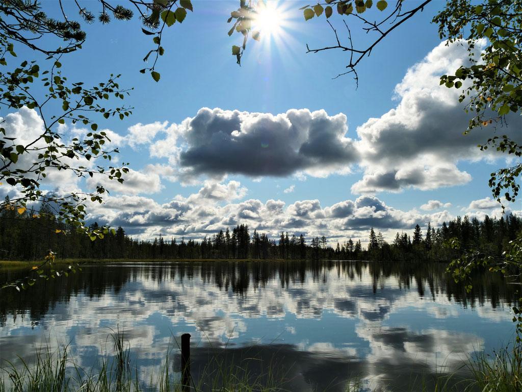 See Schweden Skandinavien wolf78 vanlife #ProjektBlackwolf explore without no limits roadtrip offroad overland Travel Camping #BornToRoam overlandbound Overlandingnomads Dachzeltnomaden wolf78-overland.ch