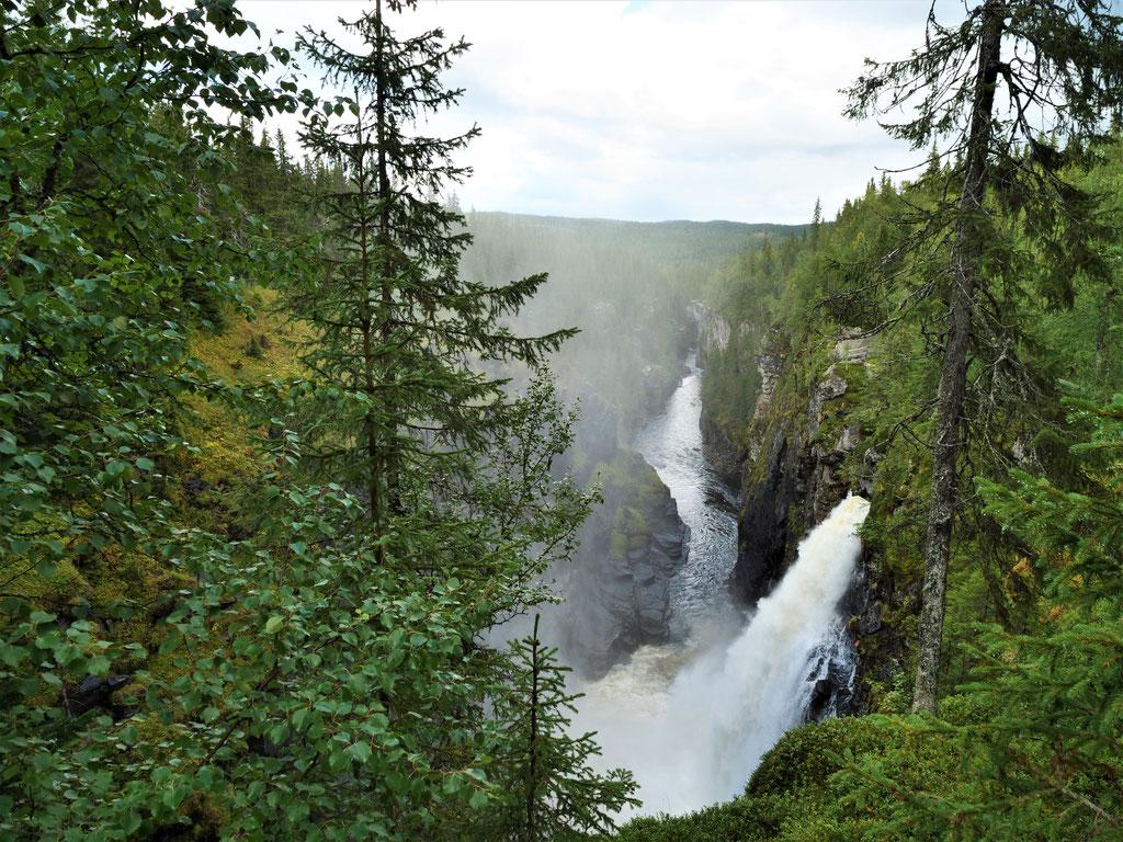 Wasserfall Schweden vildmarksvägen stekenjokk Skandinavien wolf78 #ProjektBlackwolf explore without no limits roadtrip offroad overland Travel Camping Overlandingnomads Dachzeltnomaden wolf78-overland.ch