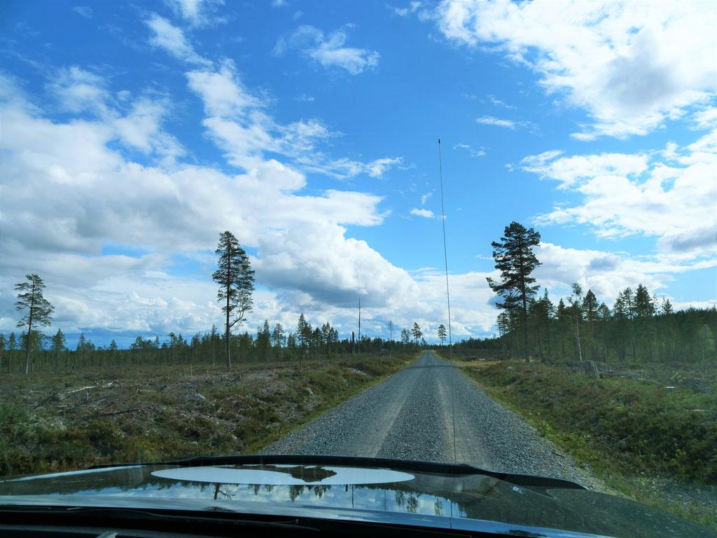 Dalarna overland Travel Camping #ProjektBlackwolf Schweden Skandinavien wolf78  explore without no limits roadtrip offroad Overlandingnomads Dachzeltnomaden wolf78-overland.ch