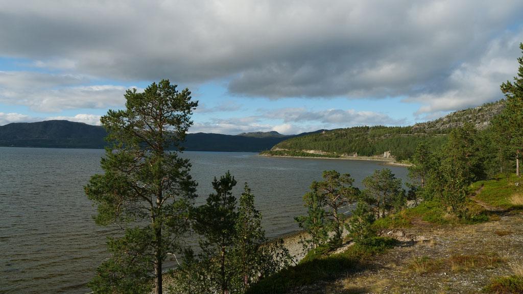 Alta Norwegen Atlantik Fjord Skandinavien wolf78 vanlife #ProjektBlackwolf explore without no limits roadtrip offroad overland Travel Camping #BornToRoam overlandbound Overlandingnomads Dachzeltnomaden wolf78-overland.ch