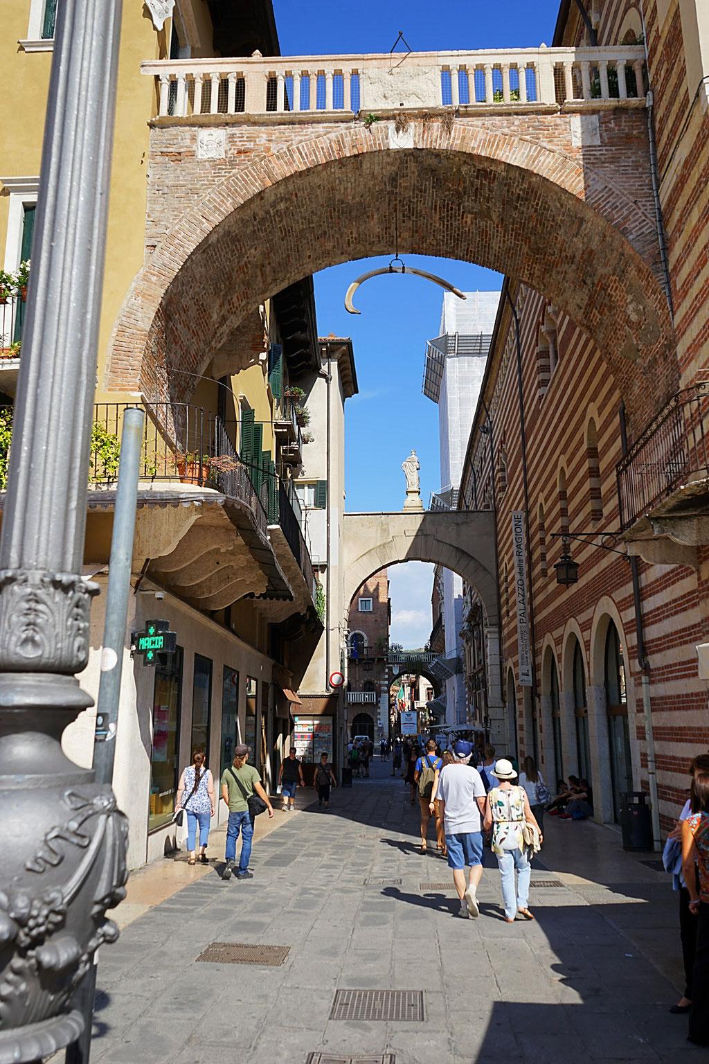 Wolf78-overland Verona