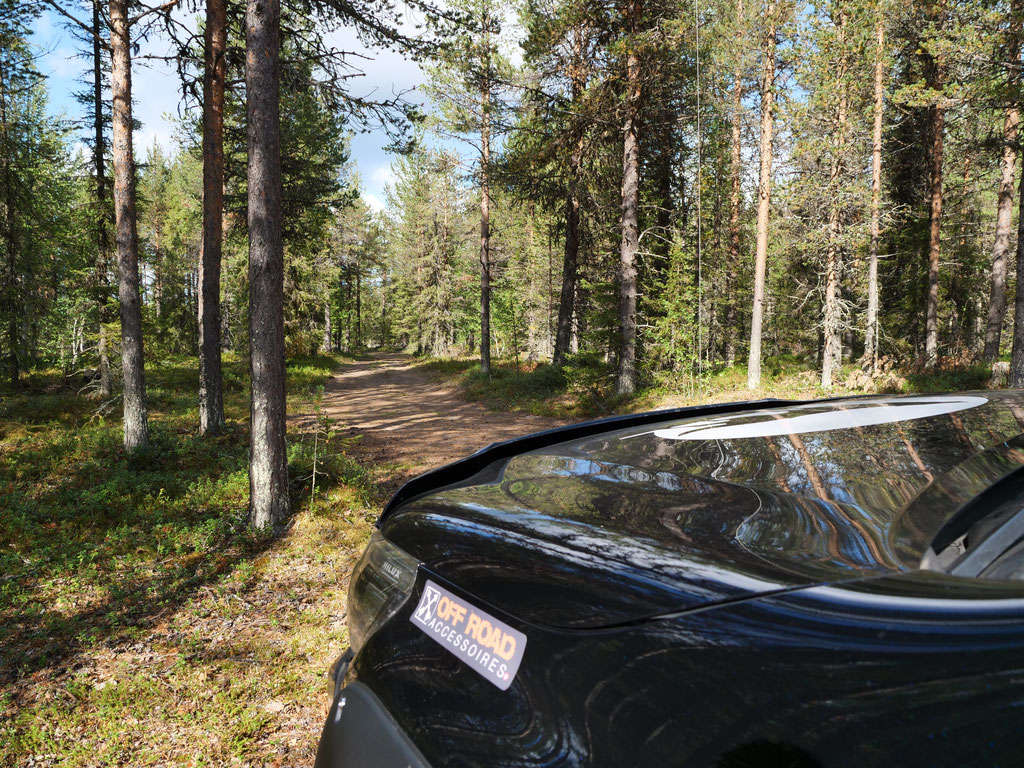 ProjektBlackwolf Toyota Hilux Wald Schweden Skandinavien wolf78 vanlife #ProjektBlackwolf explore without no limits roadtrip offroad overland Travel Camping #BornToRoam overlandbound Overlandingnomads Dachzeltnomaden wolf78-overland.ch