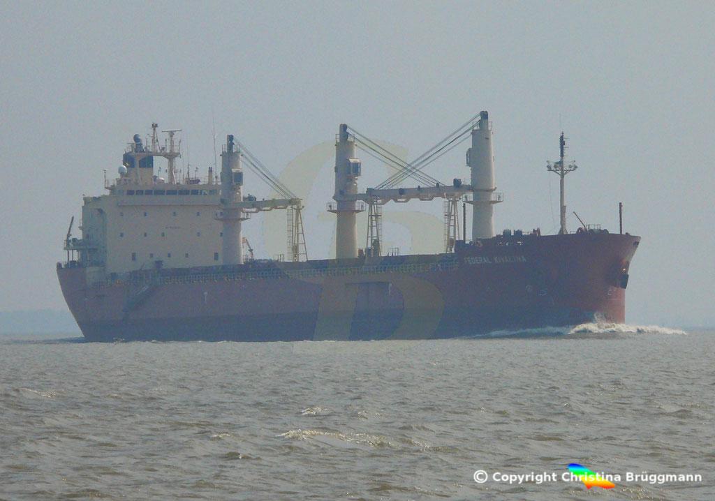 Bulk Carrier FEDREAL KIVALINA, Elbe 30.04.2019 / Bild 1