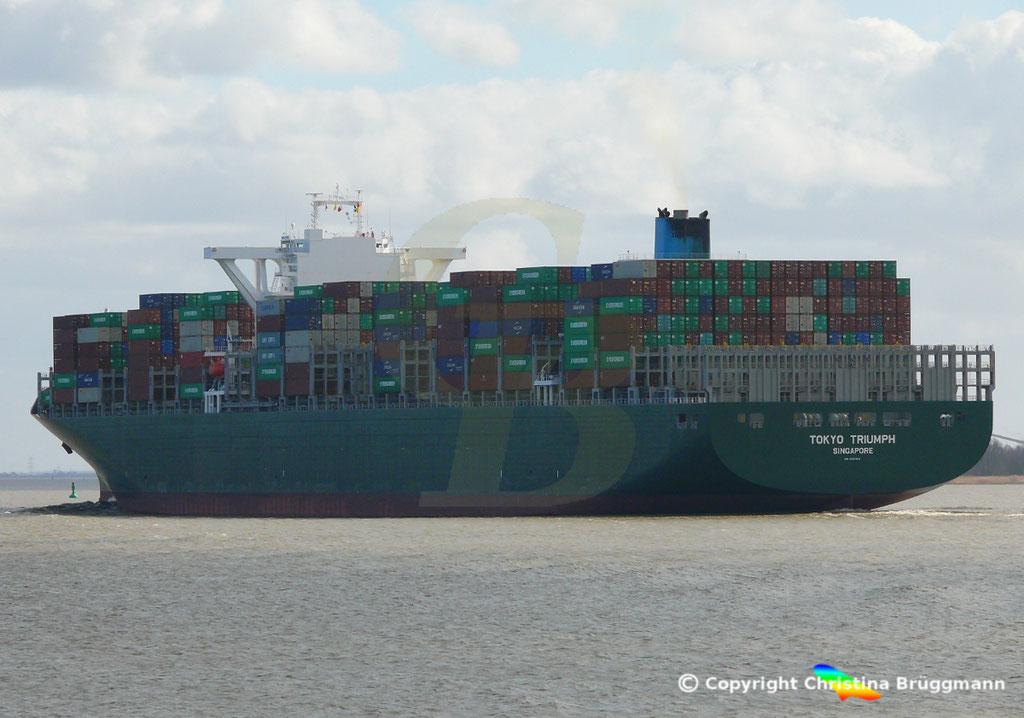 Containerschiff TOKYO TRIUMPH, Elbe 19.03.2019 / BILD 13