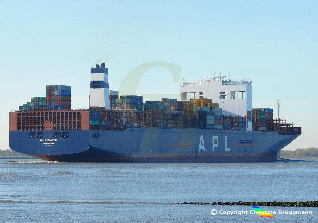 Containerschiff APL TEMASEK, Elbe 03.11.2018, BILD 5