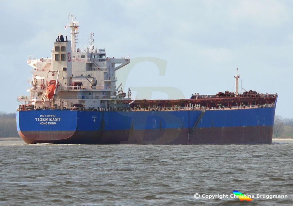 Bulk Carrier TIGER EAST, Elbe 19.03.2019,  BILD 5
