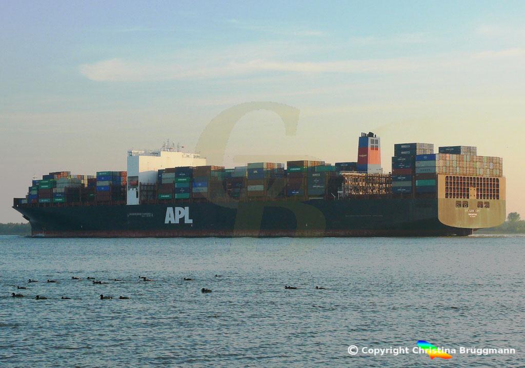 Containerschiff APL LION CITY, Elbe 10.10.2018,  BILD 2