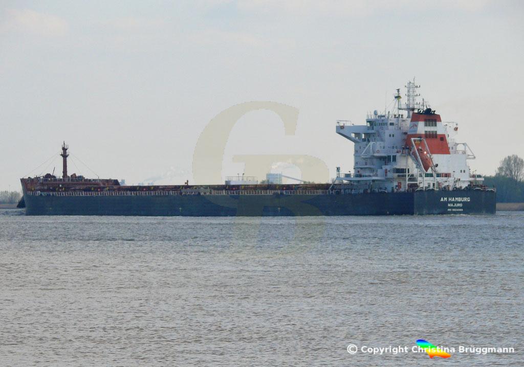 Bulk Carrier AM HAMBURG, 09.04.2019,  BILD 5