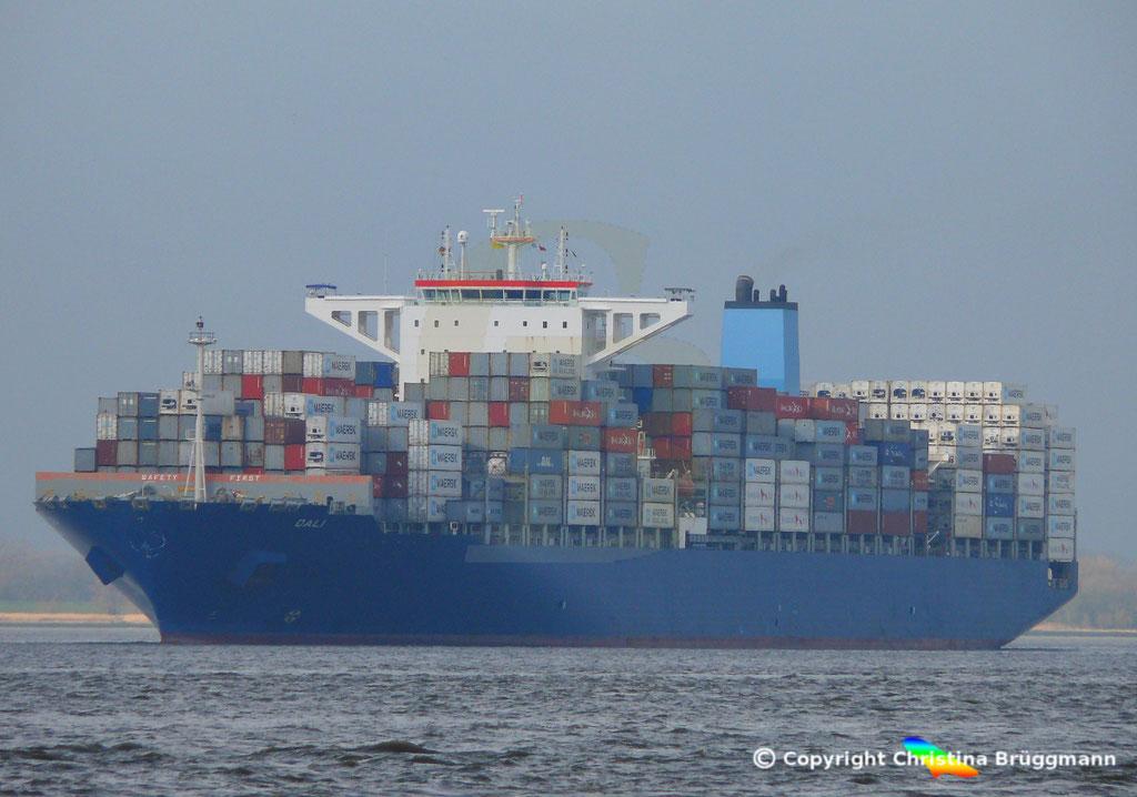 Containerschiff DALI, Elbe 19.02.2019,  BILD 1