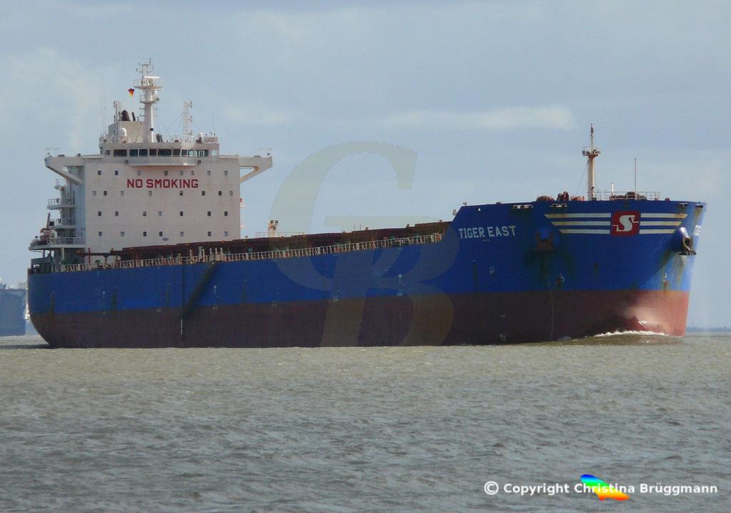 Bulk Carrier TIGER EAST, Elbe 19.03.2019,  BILD 1