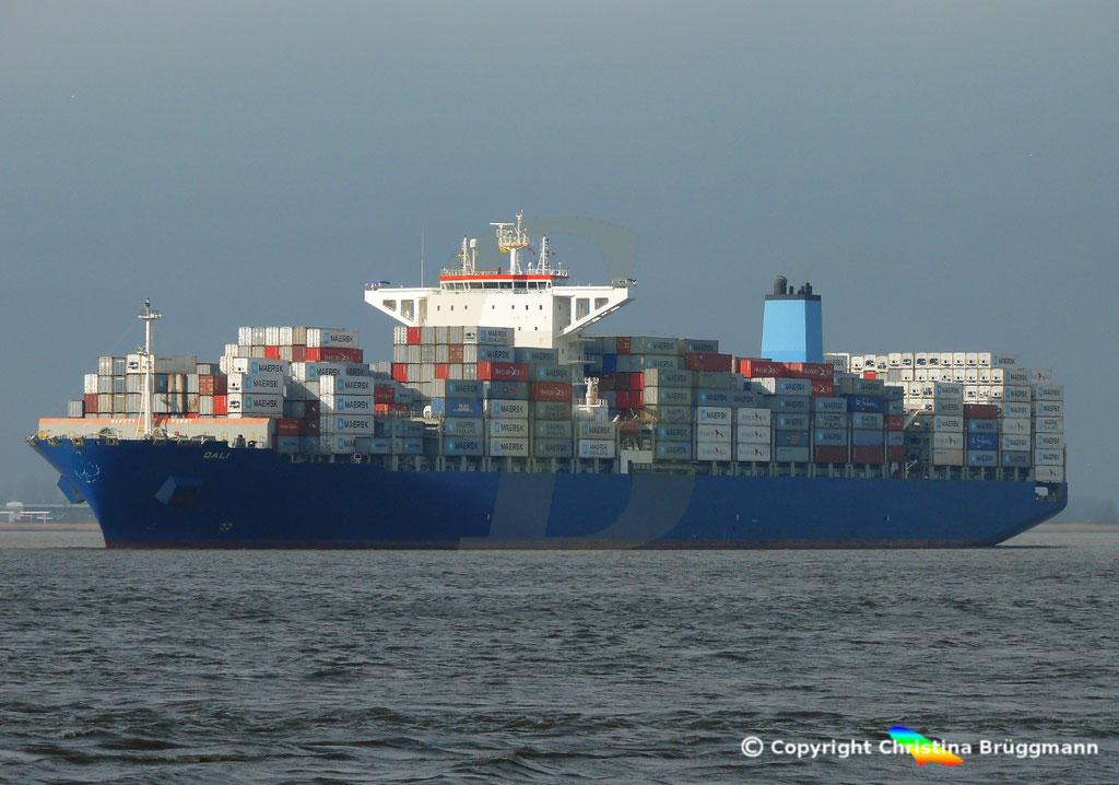 Containerschiff DALI, Elbe 19.02.2019,  BILD 2