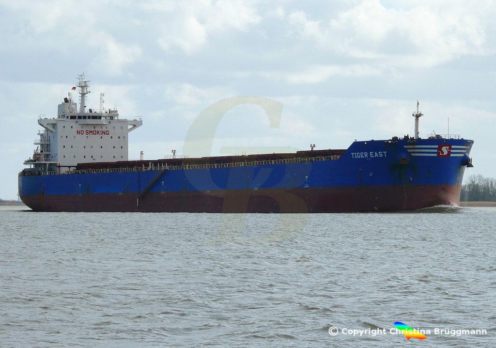 Bulk Carrier TIGER EAST, Elbe 19.03.2019,  BILD 2