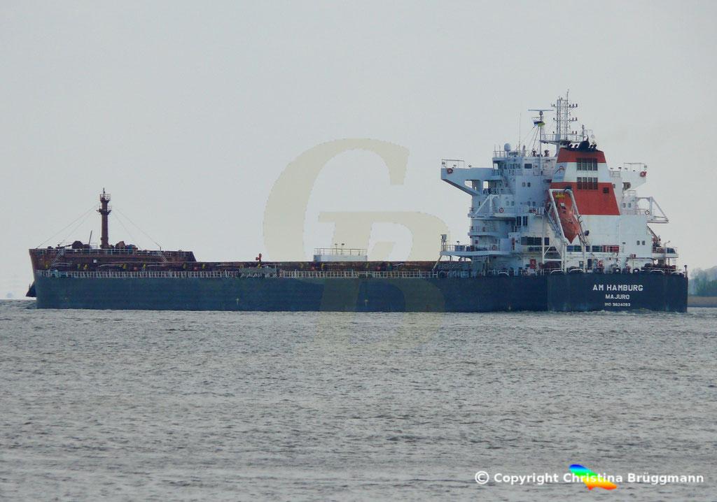 Bulk Carrier AM HAMBURG, 09.04.2019,  BILD 6