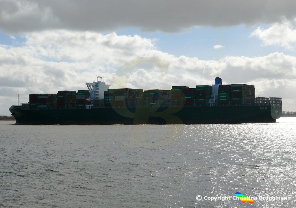 Containerschiff TOKYO TRIUMPH, Elbe 19.03.2019 / BILD 11