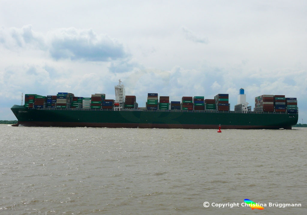 Containerschiff TOKYO TRIUMPH, Elbe 06.06.2017 / BILD 5