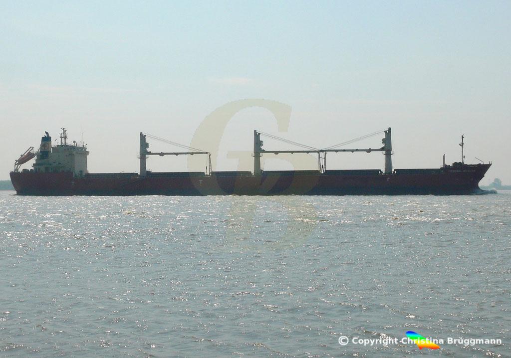 Bulk Carrier FEDREAL KIVALINA, Elbe 30.04.2019 / Bild 3