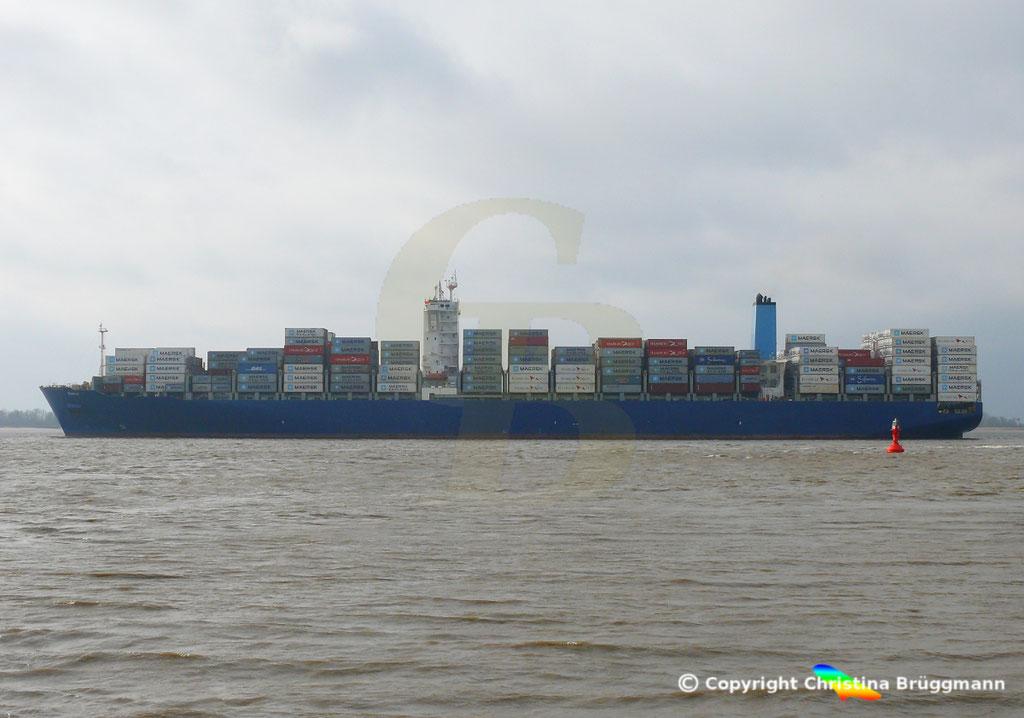 Containerschiff DALI, Elbe 19.02.2019,  BILD 5