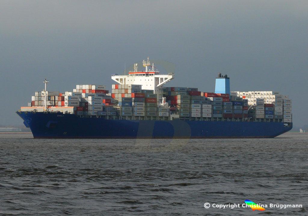 Containerschiff DALI, Elbe 19.02.2019,  BILD 3