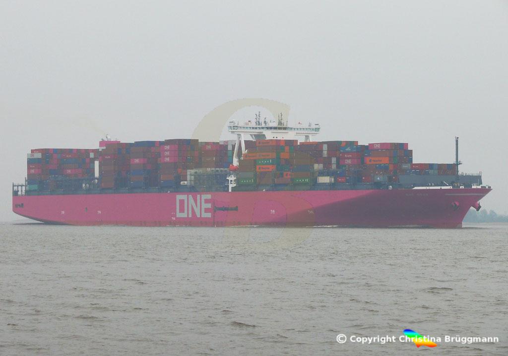 Containerschiff ONE GRUS, Elbe 20.03.2019,  BILD 2
