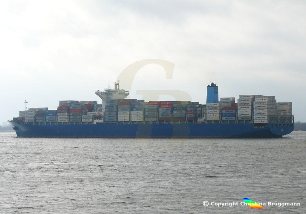 Containerschiff DALI, Elbe 19.02.2019,  BILD 6