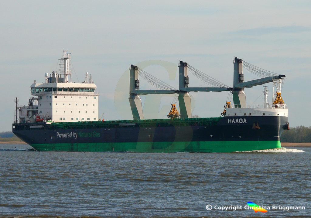 Bulk Carrier/Mehrzweckfrachter HAAGA, Elbe 03.04.2019,  BILD 11