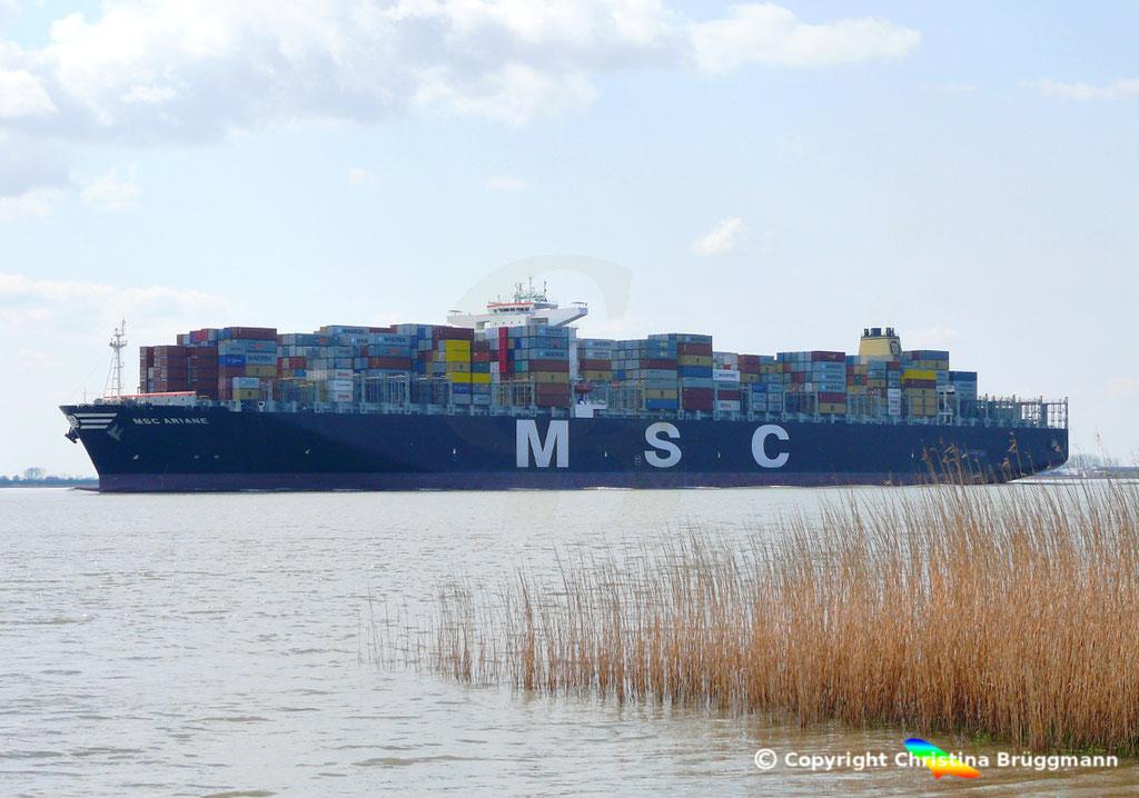 """Containerschiff """"MSC ARIANE""""  Elbe 18.04.2015 / BILD 3"""
