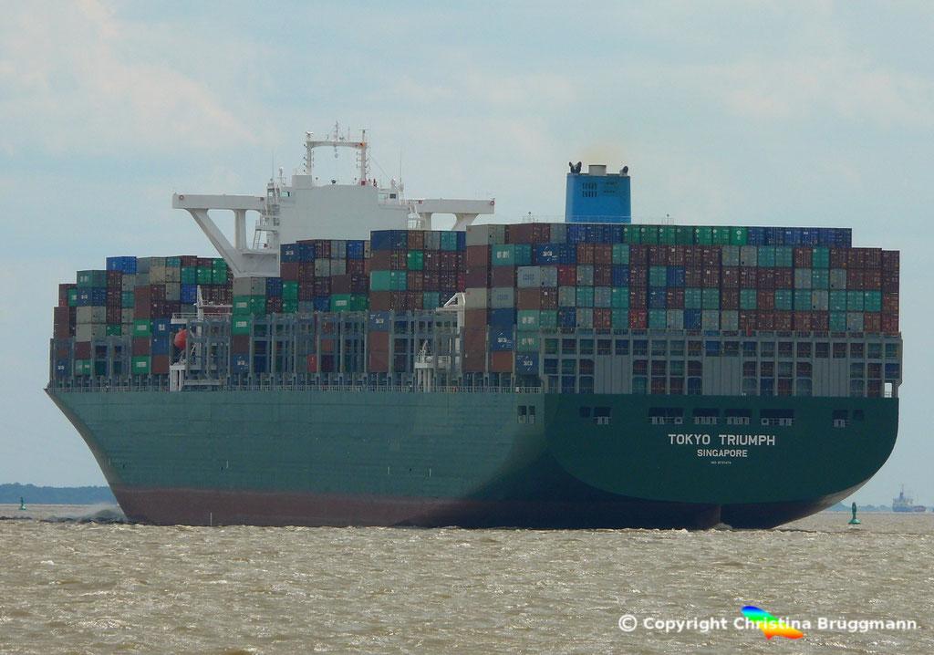 Containerschiff TOKYO TRIUMPH, Elbe 06.06.2017 / BILD 7
