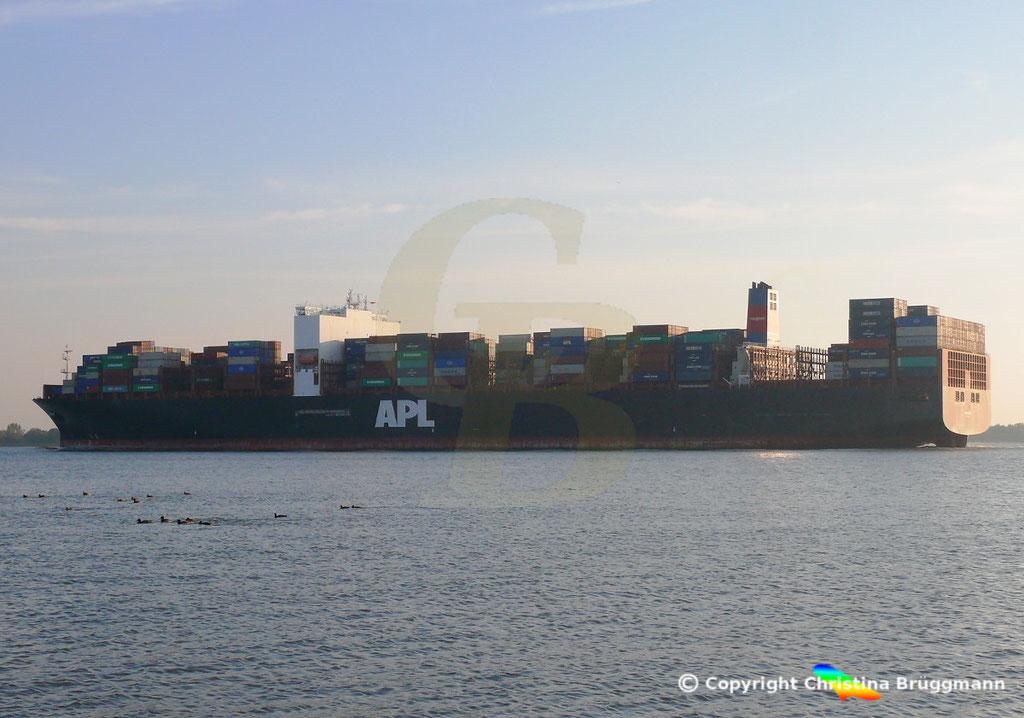 Containerschiff APL LION CITY, Elbe 10.10.2018,  BILD 1