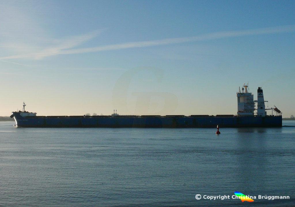 Bulk Carrier ANANGEL VICTORY, Elbe 03.01.2019, BILD 5