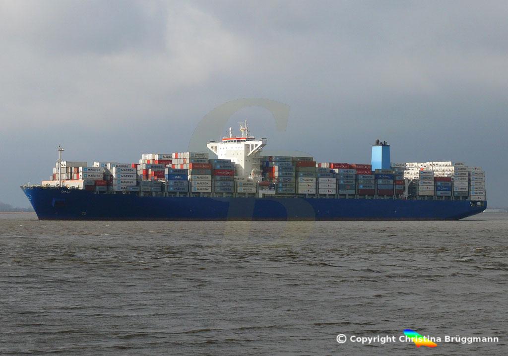 Containerschiff DALI, Elbe 19.02.2019,  BILD 4